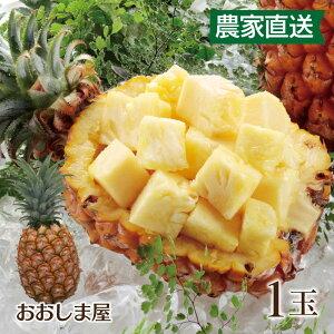 濃蜜 立派な 島パイン 1玉 パイン パイナップル ボゴールパイン(スナックパイン)ピーチパイン(ミルクパイン)農家直送 大嶌屋(おおしまや)