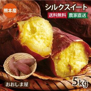 \ポイント5倍/さつまいも シルクスイート 5kg(15~25本)送料無料 生芋 さつま芋 唐芋 からいも 土付き 泥付き 野菜 旬 料理 レシピ 花見 桜 バーベキュー 国産 熊本 大嶌屋(おおしまや)【g
