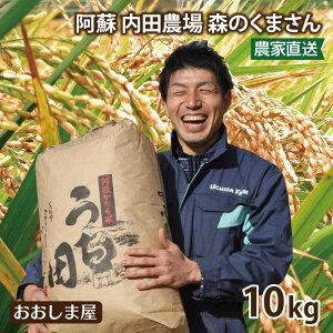 お米 内田農場 のお米 1袋 10kg 選べる 2品種 ヒノヒカリ 森のくまさん 阿蘇 熊本県産 米 白米 国産米 農家直送 送料無料 大嶌屋(おおしまや) 楽天スーパーSALE スーパーセール