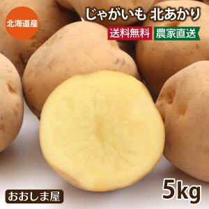 北海道ジャガイモ 北あかり 5kg(40玉前後) <7月中旬から7月下旬まで出荷予定> 送料無料 いも 芋 じゃがいも 農家直送 野菜 大嶌屋(おおしま屋)