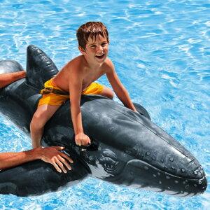 クジラ フロート ライドオン 浮き輪 浮輪 うきわ 子供用 水遊び ビーチグッズ プール 海水浴 インスタ映え SNS おしゃれ 送料無料 お宝プライス ###クジラ57530###