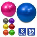 バランスボール 55cm ヨガボール エクササイズボール 体幹トレーニング 全身運動 インナーマッスル 空気入れ付 送料無…