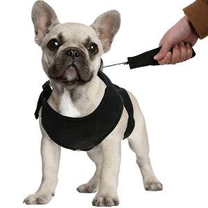 犬 ハーネス リード付 ベストハーネス ハーネスリードセット 小型犬 中型犬 ペット 服 ウェアハーネス シートベルト 胴輪 キャット ドッグ メッシュ 送料無料###ペットハーネスGYF###
