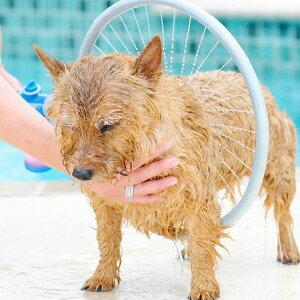 新型 ペットシャワー ペットウォッシャー ペット風呂 噴霧器シャワー 犬猫入浴 全身 簡単シャンプー 360度シャワーヘッド 送料無料 ###シャワーヘッドXZQ-L###