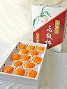 【農家より直送!】奈良西吉野産たねなし柿(13個入り・約2.9kg)【 特秀品 2Lサイズ 】