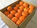 【奈良西吉野産わけありたねなし柿(M〜3L 15〜20個入り・約4kg)】送料無料