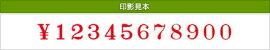 テクノタッチ回転印欧文12連(明朝体)4号