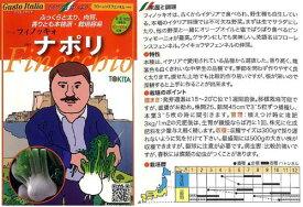 【イタリアの野菜】GustoItalia フローレンスフェンネル ナポリ(フィノッキオ) /小袋