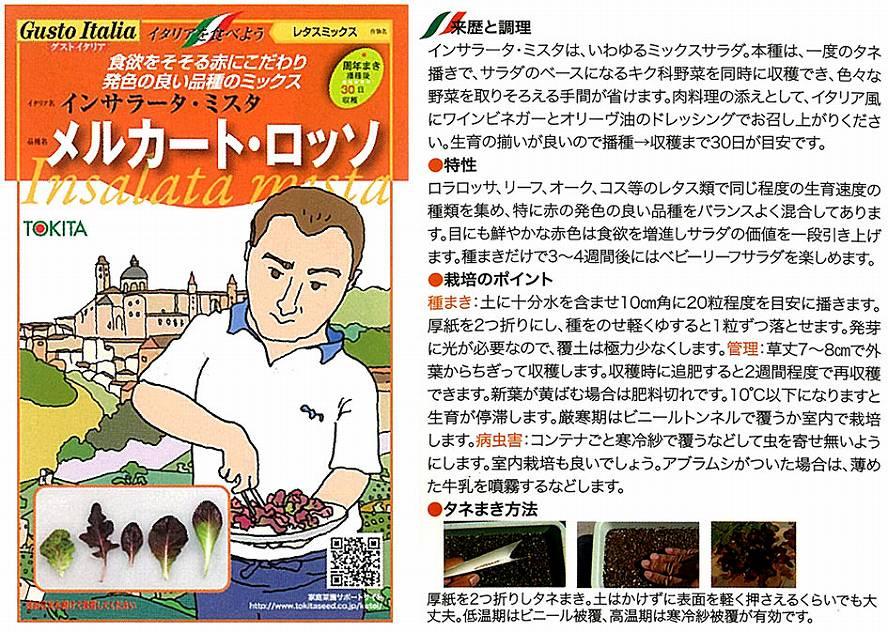 【イタリアの野菜】GustoItalia インサラータ・ミスタ メルカート・ロッソ(レタスミックス)/小袋