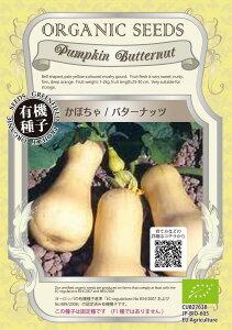 【オーガニックの果菜】かぼちゃ バターナッツ/小袋