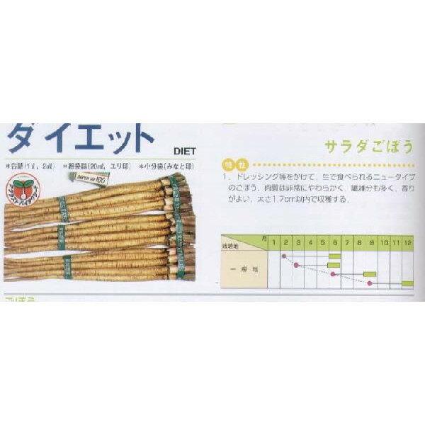 【ゴボウ】ダイエット〔サカタ〕/小袋