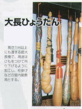 【ヒョウタン】大長ひょうたん〔福井シード〕/小袋