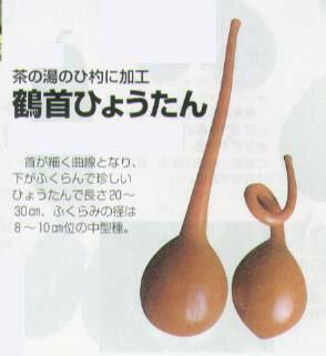 【ヒョウタン】鶴首ひょうたん〔福井シード〕/小袋