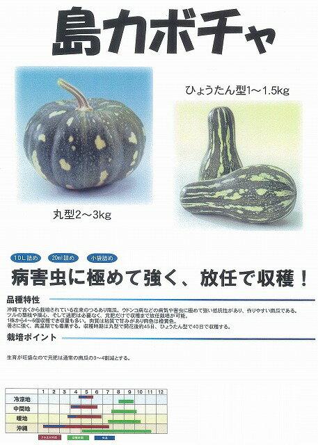 【カボチャ】沖縄島カボチャ(ひょうたん型)〔フタバ〕/小袋