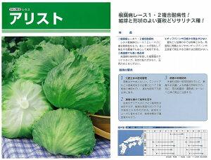 【レタス】アリスト〔タキイ育成〕/ペレットL5千粒