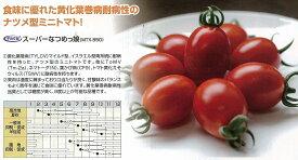 【ミニトマト】スーパーなつめっ娘〔宇治交配〕/小袋