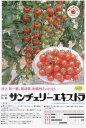 【ミニトマト】サンチェリーエキストラ〔ダイヤ交配〕/小袋