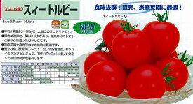 【ミニトマト】スイートルビー〔カネコ交配〕/小袋