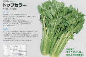【セロリ】セルリー トップセラー〔タキイ交配〕/小袋