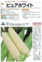 【トウモロコシ】ピュアホワイト〔雪印種苗〕/小袋