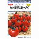 【トマト】Mr.浅野のけっさく(ミスターあさののけっさくトマト)〔松島交配〕/小袋