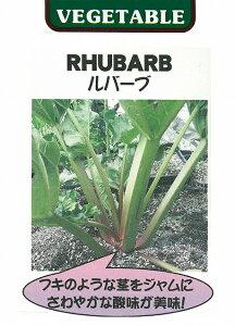 【世界の珍しい野菜】ルバーブ/小袋