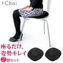 骨盤 クッション オフィス「座るだけ。骨盤立てて姿勢きれい」MARNA マーナ 骨盤座ぶとん 2個セット ブラック オフィ…
