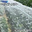 台風対策ベタ掛けネットタイフーンカバー幅400cm×長さ50m