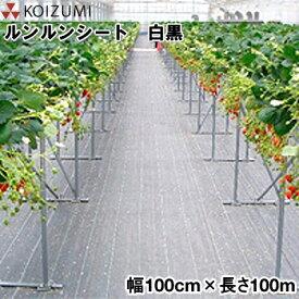 KOIZUMI (小泉製麻) 防草シート ルンルンシート 白黒 幅100cm×長さ100m