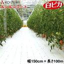 KOIZUMI (小泉製麻) 防草シート ルンルンシート 白ピカ 幅150cm×長さ100m
