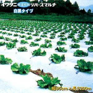 イワタニリバースマルチ(白黒マルチ) 厚み0.023mm 幅95cm×長さ200m 5本セット