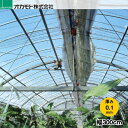農業用POフィルム クリーンソフト ゴリラ 厚さ0.1mm 幅300cm 長さは1m単位で指定切売り (条件付き送料無料)