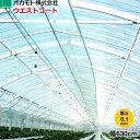 農業用POフィルム 塗布型 ウエストコート 厚さ0.1mm 幅630cm 長さ(m)は数量で指定
