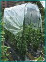菜園用 雨よけシートセット 1.9m×2.1m