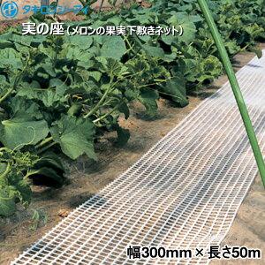 タキロンシーアイ 実の座 (メロンの果実下敷きネット) 白 幅300mm×長さ50m 2巻入り