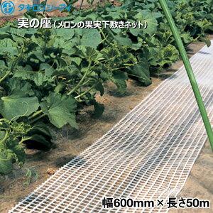 タキロンシーアイ 実の座 (メロンの果実下敷きネット) 白 幅600mm×長さ50m 1巻入り