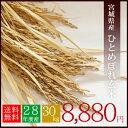 【送料無料】28年産 宮城県産 ひとめぼれ 玄米 30kg