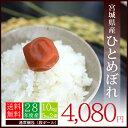 【送料無料】28年度産米 宮城県産 ひとめぼれ 10kg(5kg×2袋)