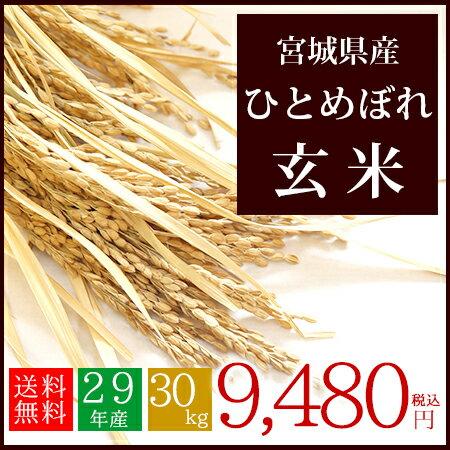 29年産 宮城県産 ひとめぼれ 玄米 30kg 送料無料