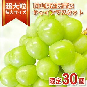 【限定30個】一房850g以上の超大粒特大サイズ 厳選 岡山県産最高級シャインマスカット