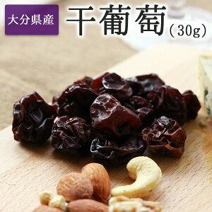 完全無添加 大分県産 干しぶどう 30g 巨峰を使って作られた国産ドライフルーツ 干葡萄