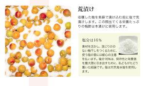 【完全無添加】梅干豊の香梅1000g完熟南高梅しそ漬けうめぼし