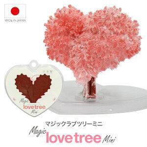 マジックラブツリーミニ6時間で育つ不思議なツリー【おとぎの国】バレンタイン
