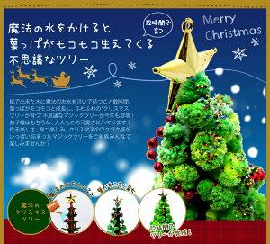 クリスマスツリーミニマジックツリー『マジッククリスマスツリー』12時間で育つ不思議なクリスマスツリー【おとぎの国TBSあさチャン!】マジックスノー