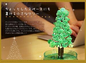 クリスマスツリーミニマジックツリー『マジッククリスマスツリー』12時間で育つ不思議なクリスマスツリー【おとぎの国TBSあさチャン!】