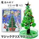 【送料無料】クリスマスツリー マジックツリー 『マジッククリスマスツリー』12時間で育つ不思議なクリスマスツリー【…