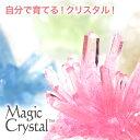 【しゃべくり007で紹介!】マジッククリスタル 10日で育つ不思議なクリスタル Magic Crystal クリスタル栽培キット 手作りキット 世界で一つだけの...
