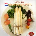 【od marche】ホワイトアスパラガス オランダ産3Lサイズ 5Kg (約40-50本前後)【業務用箱】