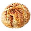 フランス産田舎風プチパン