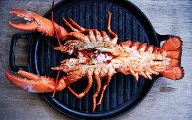 ジャンボオマール 300-350gハイプレッシャー(生冷凍)カナダ産 焼いても茹でても美味しいホールオマール BBQ bbq 焼肉 お中元 ギフトプレゼント 夏休み キャンプ